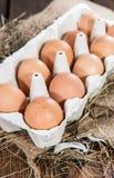 Brown-Eier in einem Kasten Lizenzfreie Stockfotografie