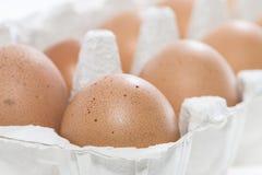 Brown-Eier in einem Kasten Stockfotos