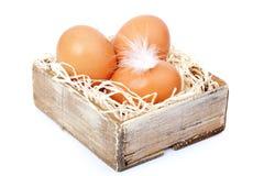Brown-Eier am Heu, im alten Kasten Lizenzfreies Stockbild