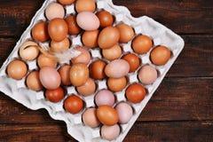 Brown-Eier im Behälter Stockbild