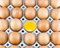 Brown-Eier im Detail auf einem Behälter Lizenzfreie Stockbilder