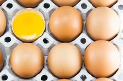 Brown-Eier im Detail auf einem Behälter Stockfotos