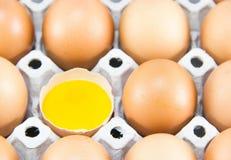 Brown-Eier im Detail auf einem Behälter Lizenzfreies Stockbild