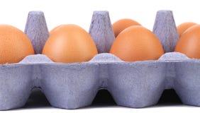 Brown-Eier im Eikasten. Lizenzfreies Stockfoto