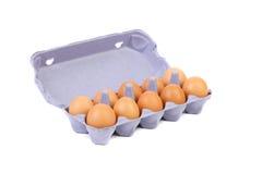 Brown-Eier im Eikasten. Lizenzfreie Stockfotografie