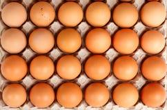 Brown-Eier im Gitter Stockfoto