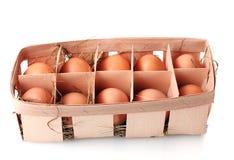 Brown-Eier im Kasten Stockbilder
