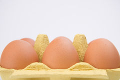 Brown-Eier im Pappkarton Stockbild