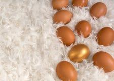 Brown-Eier und ein goldenes Ei auf Stapel von Weiß Lizenzfreies Stockfoto