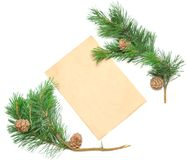 Brown envelope for letters with pine branch Stock Photography