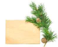 Brown envelope for letters with pine branch Stock Images
