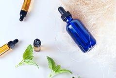 Brown et bouteilles bleues d'huile essentielle avec la menthe fraîche photographie stock