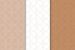 Brown et ornements géométriques blancs Ensemble de configurations sans joint Photographie stock libre de droits