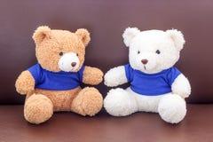 Brown et ours de nounours blanc avec la chemise bleue sur le sofa Photographie stock libre de droits