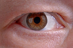 Brown Eye. A close up image of a large brown eye Royalty Free Stock Photo