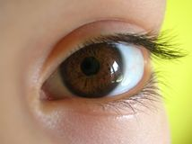 Brown eye. Child's brown eye close-up over yellow Royalty Free Stock Images