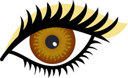 Brown Eye. Stylized Illustration of a woman's brown eye with gold eye shadow Royalty Free Stock Images