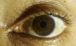 Brown eye close up. A close up of the eye with brown iris of a young man Stock Photos