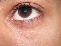 Brown Eye closeup Royalty Free Stock Images
