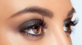 Brown Eye Makeup Stock Image