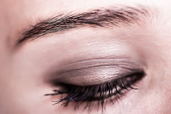 Brown Eye Makeup. Beautiful Eyes Make-up. Macro Stock Image