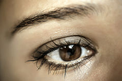 Brown Eye Makeup. Beautiful Eyes Make-up. Macro Stock Photo