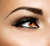 Brown Eye Makeup. Eyes Make-up Stock Images