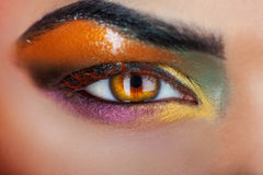 Brown eye of woman with make up. In studio Royalty Free Stock Photo