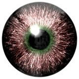 Brown eyeball texture with green. And black round, white background stock illustration