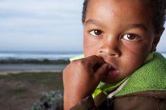 Brown eyed boy stock images