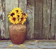 Brown eyed susans in vase on wood. stock images