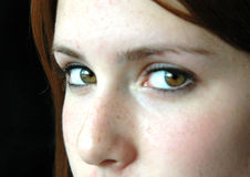 Brown eyes. Close up of a girls face with brown eyes (focus on left eye Stock Images