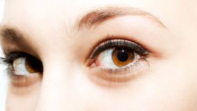 Brown eyes stock images