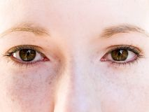 Brown eyes. The brown eyes of a woman wearing eyeliner, eye shadow, and mascara stock image