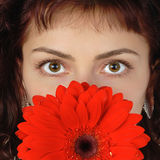 Brown eyes. A portrait of a beautiful woman with brown eyes holding red daisy Stock Image