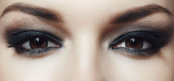 Brown eyes Royalty Free Stock Image