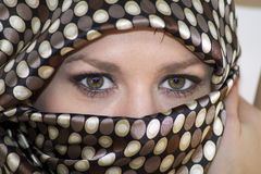 brown eyes kvinnan Arkivbilder