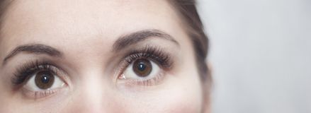 Brown eyes with long lashes. Brown eyes close-up with long, crooked lashes looking up stock photography