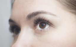 Brown eyes with long lashes. Brown eyes close-up with long, crooked lashes looking up stock image