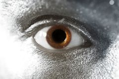 Brown eyes male closeup Royalty Free Stock Image