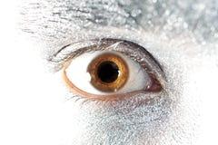 Brown eyes o close up masculino fotos de stock