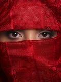 brown eyes röd reemie Fotografering för Bildbyråer