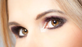 Brown eyes of young woman Stock Image