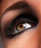 Brown eyeshadow. Beautiful make up and brown eyeshadow of eye stock photo