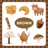 Brown färg Royaltyfri Fotografi