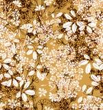 Brown färg Royaltyfria Bilder