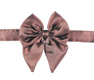 Brown fabric bow Stock Photo