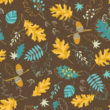 Brown fall pattern Royalty Free Stock Images