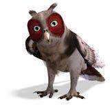 Brown fantasy owl Royalty Free Stock Photos