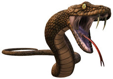 Brown fantasy snake Stock Image
